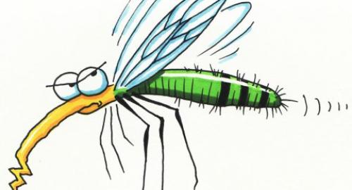Morsicature e punture: dalle api alle zanzare, come rimediare